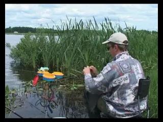 Платная рыбалка в Запрудном — Мужские карты SBOM RU